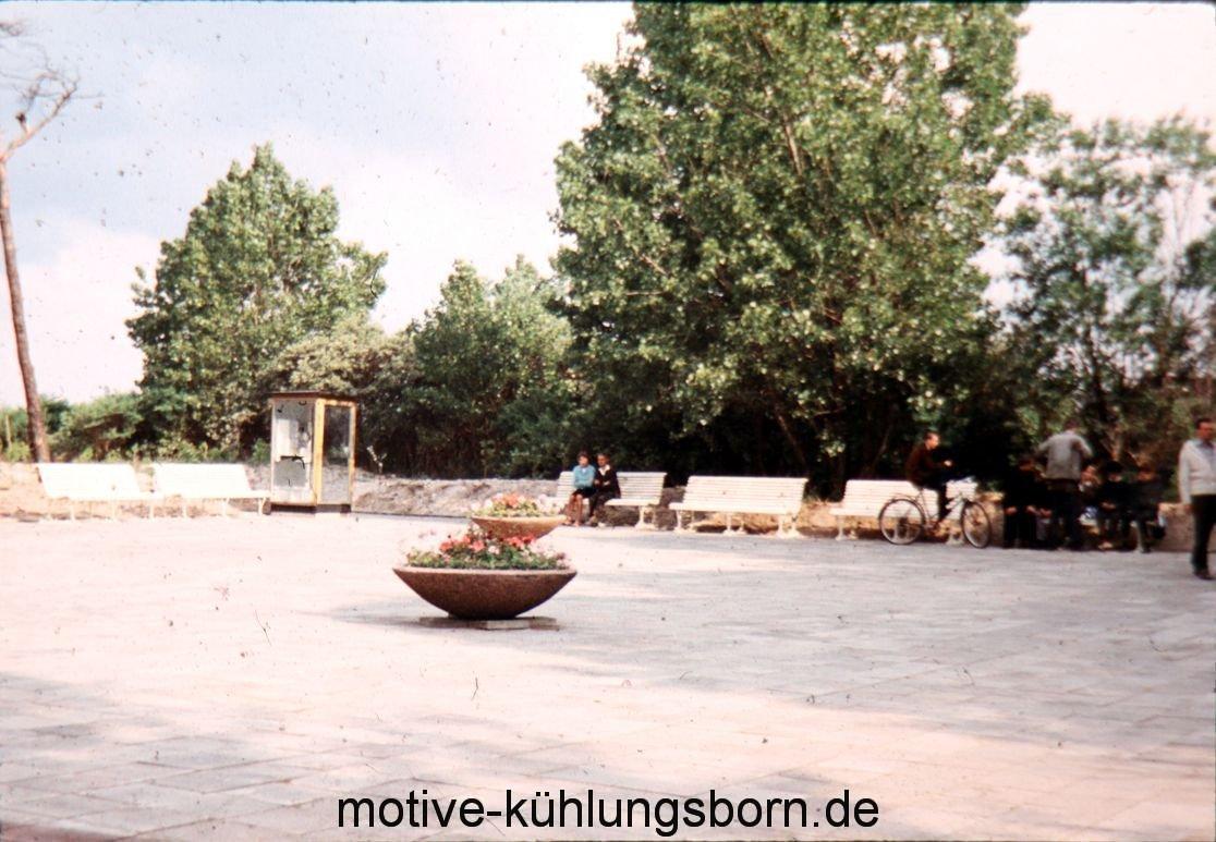 k-IMG_0027